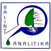Bálint Analitika Kft.